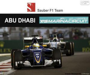Marcus Ericsson, GP von Abu Dhabi 2016 puzzle