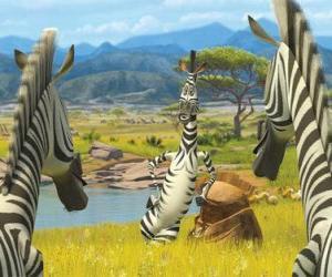 Marty im Gespräch mit anderen Zebras puzzle