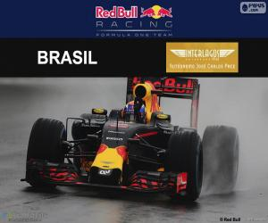 Max Verstappen, Großer Preis Brasilien 2016 puzzle