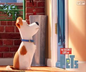 Max vor der Tür puzzle