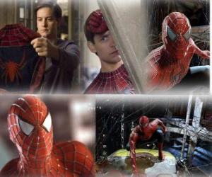 Mehrere Bilder von Spiderman puzzle