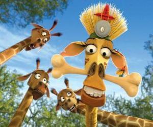 Melman die Giraffe verkleidet unter den neugierigen Augen der anderen Giraffen puzzle