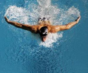 Michael Phelps schwamm puzzle