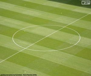 Mittelkreis eines Fußballfeldes puzzle