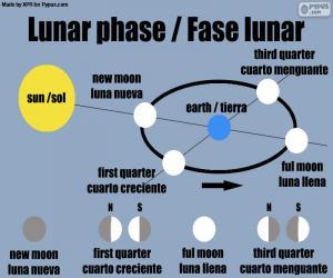 Mondphase puzzle
