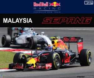 M.Verstappen, GP von Malaysia 2016 puzzle