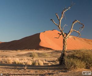 Namib-Wüste, Namibia puzzle