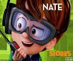 Nate, Charakter der Störche puzzle