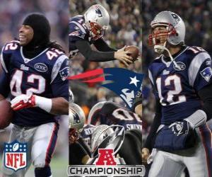 New England Patriots AFC champion 2011 puzzle