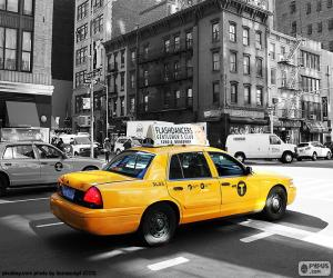 New York City Taxi Cabs puzzle