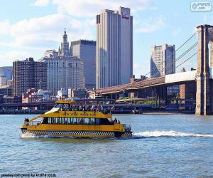 New York Water Taxi puzzle