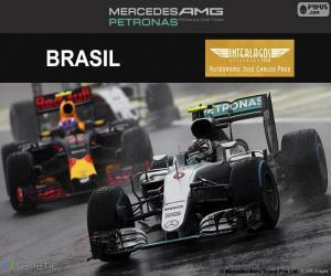 Nico Rosberg, Großer Preis Brasilien 2016 puzzle