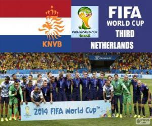 Niederlande 3. klassifiziert der Fußball-Weltmeisterschaft für Brasilien 2014 puzzle