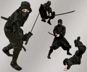 Ninja in verschiedenen Positionen puzzle