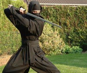 Ninja Krieger und den Kampf mit dem Katana puzzle