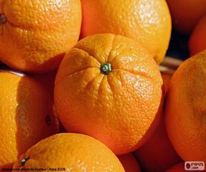 Orangen puzzle