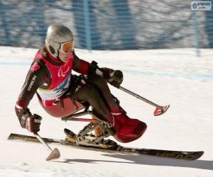 Paralympic Skifahrer im Slalom puzzle