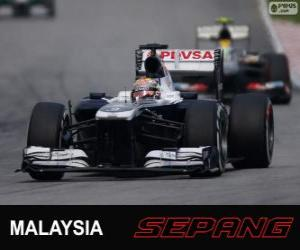 Pastor Maldonado - Williams - Sepang 2013 puzzle