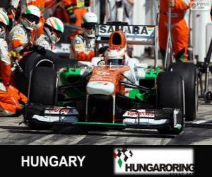 Paul di Resta - Force India - Hungaroring, 2013 puzzle