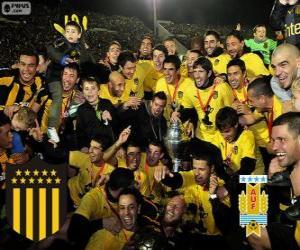 Peñarol Montevideo, Champion erste Spielklasse im Fußball 2012-2013, Uruguay puzzle