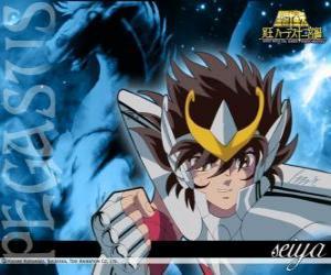 Pegasus Seiya puzzle