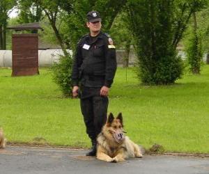 Polizist mit seinem Polizeihund puzzle