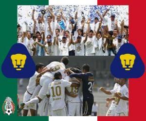 Pumas UNAM, Meister Clausura 2011 Mexico puzzle