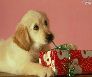 Puppy Spielen mit einem Geschenkband puzzle