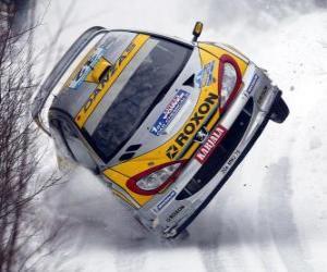 Rallye auto auf dem Schnee puzzle