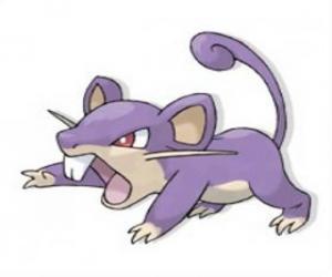 Rattata - Pokémon Normaltyp, schnelle angreifende ratte puzzle