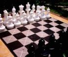 Schachbrett mit allen stücken, die um das spiel zu starten