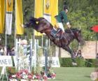 Pferdesport - Pferd und Reiter im Springen Ausübung