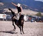 Rodeo - reiten von wildpferden mit sattel