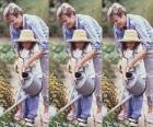 Großmutter lehre ihre enkelin zu bewässerung