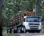 LKW-Transport von Baumstämmen