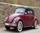 Klassiker auto - VW Käfer