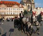 Pferdekutschen - Beförderung