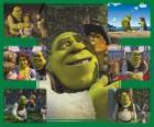 Mehrere Bilder von Shrek