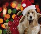 Welpe mit Santa Claus hat in einem Korb