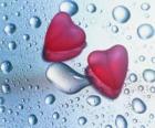 Zwei rote Herzen und Regentropfen