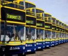 Busse von Dublin auf dem Parkplatz