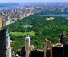 Luftbild des Central Park, New York