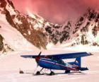 Cessna 185 in den Schnee