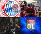 UEFA Champions League Halbfinale 2009-10, FC Bayern München - Olympique Lyonnais