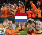 Niederlande Südafrika 2010 Finalist