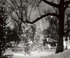 Weihnachten im Park