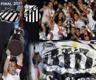 Copa Libertadores 2011 Meister FC Santos