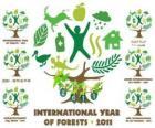 2011 Internationale Jahr des Waldes