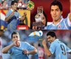 Luis Suarez beste Spieler der Copa America 2011