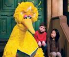 Big Bird Lesen eines Bilderbuch